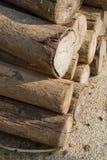 Brennholzstapel Lizenzfreies Stockfoto