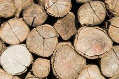 Brennholzstapel Lizenzfreie Stockbilder