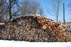 Brennholzstapel nahe bei Kesselhaus. Stockbilder