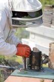 Brennstoffaufnahme der Biene Fogger oder des Rauchers Stockbilder