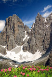 Brenta-Dolomites Italy Stock Photos