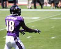 Breshad Perriman royalty free stock images
