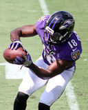 Breshad Perriman Royalty Free Stock Photo