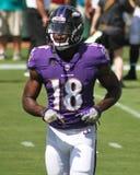 Breshad Perriman. Baltimore Ravens WR Breshad Perriman, #18 Stock Images