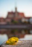 Breslau, Polen am 22. Oktober 2016 Ein Herbstblatt mit dem Churc Lizenzfreies Stockbild