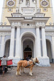 Bressanone, horses with carriage in front of the cathedral Royalty Free Stock Image