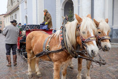 Bressanone, horses with carriage in front of the cathedral. Bressanone, horses with carriage parked in front of the cathedral Royalty Free Stock Photos