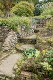 Bressingham trädgårdar - som är västra av Diss i Norfolk, England - som är eniga Royaltyfri Foto