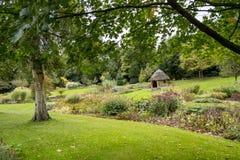 Bressingham trädgårdar - som är västra av Diss i Norfolk, England - som är eniga Arkivfoto