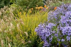 Bressingham trädgårdar - som är västra av Diss i Norfolk, England - som är eniga Arkivbild