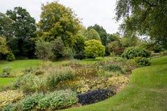 Bressingham trädgårdar - som är västra av Diss i Norfolk, England - som är eniga Royaltyfri Fotografi