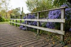 Bressinghamtuinen - ten westen van Diss in Norfolk, Verenigd Engeland - stock fotografie