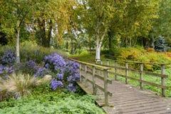 Bressinghamtuinen - ten westen van Diss in Norfolk, Verenigd Engeland - royalty-vrije stock afbeeldingen