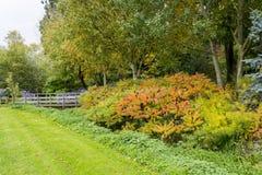 Bressinghamtuinen - ten westen van Diss in Norfolk, Verenigd Engeland - royalty-vrije stock foto's