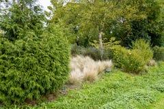 Bressinghamtuinen - ten westen van Diss in Norfolk, Verenigd Engeland - stock afbeeldingen