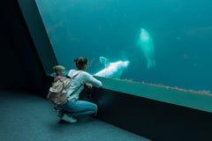 Brest, den Frankrike 31 Maj 2018 mamman och hans lilla dotter ser havsfisken och djur i akvariet av Oceanopolisen arkivbild