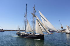 BREST, FRANCE - JULY 18 : the topsail gulet Wylde Swan during the maritime festivals Brest 2016, july 18, 2016 Stock Photos