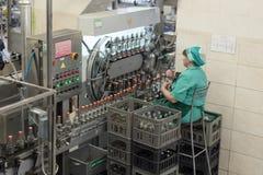 Brest spritfabrik Anställd övervakar den visuella kontrollen av flaskor med vodka royaltyfri bild