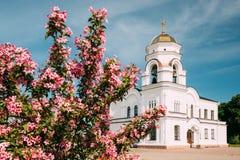 Brest, Wit-Rusland Klokketorenklokketoren van Garrison Cathedral St Nicholas Church in Herdenkings Complex Brest royalty-vrije stock afbeeldingen