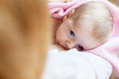 Brestfeeding recién nacido Fotos de archivo libres de regalías