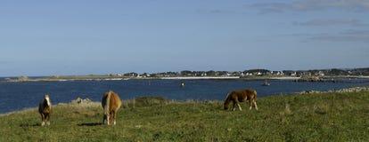 Bretagne, Finistere: Küstenlinie von Kersaint lizenzfreie stockbilder