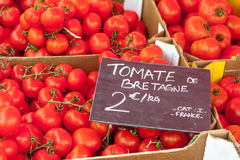 Breton tomatoes Royalty Free Stock Photography