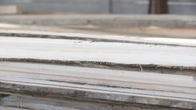 Brett in der Stapelholzindustrie stock footage