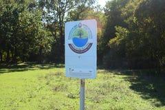 Brett in einem nationalen Forest Park Lizenzfreies Stockfoto