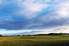 Brett fältlandskap och några jordbruks- byggnader under ett stort Royaltyfria Bilder
