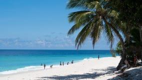 Brett skott av ungar som spelar på en sandig strand i Maldiverna med klart blått vatten och en högväxt palmträd fotografering för bildbyråer