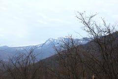 Brett vinkelfoto som tas med insnöat bergen royaltyfri fotografi