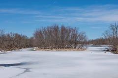 Brett vinkellandskap av en ö i den vidsträckta Sten Croix River med Wisconsin på den vänstra shorelinen och Minnesota på den högr royaltyfri bild