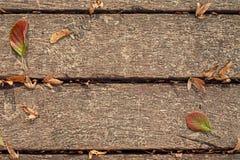 Bretter mit Blättern Lizenzfreies Stockbild