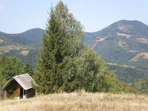 Bretterbude über Drina-Fluss Stockfotos