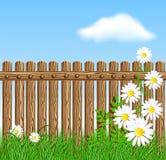 Bretterzaun auf grünem Gras mit Gänseblümchen Stockbilder