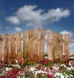 Bretterzaun in den Blumen Stockbilder