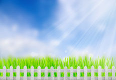 Bretterzaun in einem grünen Gras Lizenzfreie Stockbilder