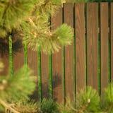 Bretterzaun im Garten Stockbild