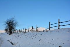 Bretterzaun im Winter mit Schnee und blauem Himmel, Baum auf dem links Stockfotografie