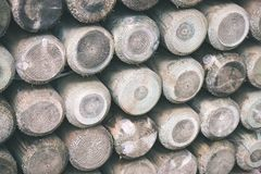 Bretterzaundetails und Materialien - Weinlesefilmeffekt Lizenzfreie Stockfotos