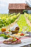 Brettljause,有膳食的冷的板材在木桌上在葡萄园里 免版税库存图片