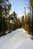 Bretton Woods, New Hampshire Royalty Free Stock Photos