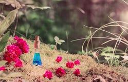 Breuvage magique magique dans la bouteille dans la forêt Photo stock