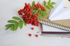 Brevpapper- och kontorstillförsel med filialen av bergaskaen och papper hyvlar på grå träbakgrund Royaltyfri Fotografi