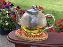 Garden Tea royalty free stock images