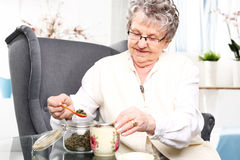 Brew of herbs, herbal medicine. Royalty Free Stock Images