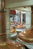 Brew Kettles. Shot of numerous beer brewery kettles in the factory Royalty Free Stock Photos
