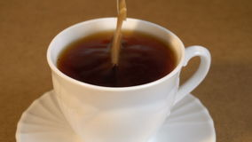 Brew teabag in Cup of tea stock video