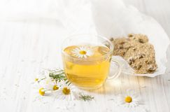Brewed dry chamomile flowers in a Cup on a white table Stock Photos