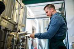 Brewer checking beer at brewery. Attentive brewer checking beer at brewery Stock Photography
